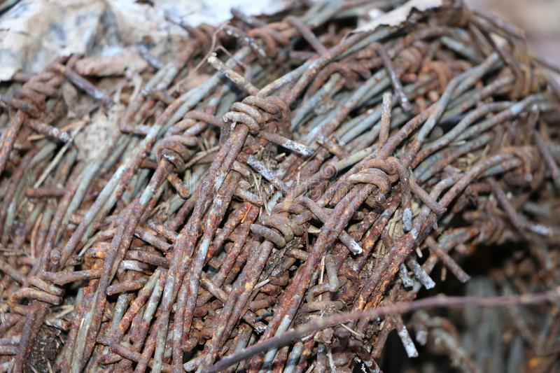 A hank of rusty old barbed wire lies in a forest on dry leaves. Round tangle of rusty old prickly dangerous wire lies in a forest on dry leaves royalty free stock image