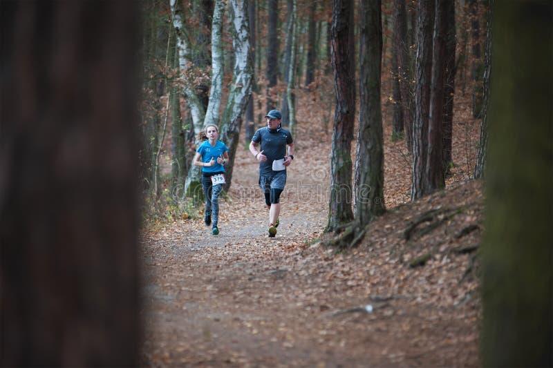 Hannah Pilsen Trail Krkavec Corredores hombre y mujer que corren al corriente en bosque fotografía de archivo