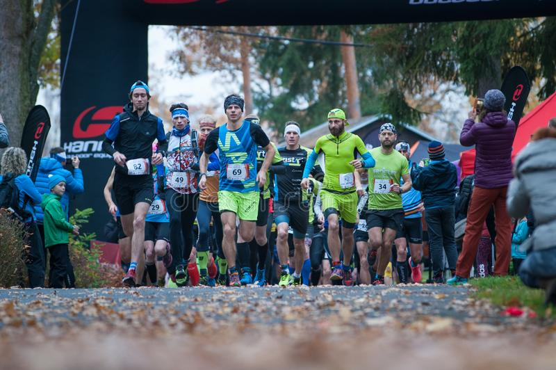 Hannah Pilsen Trail Krkavec Löpare kort efter starten av maraton royaltyfria foton