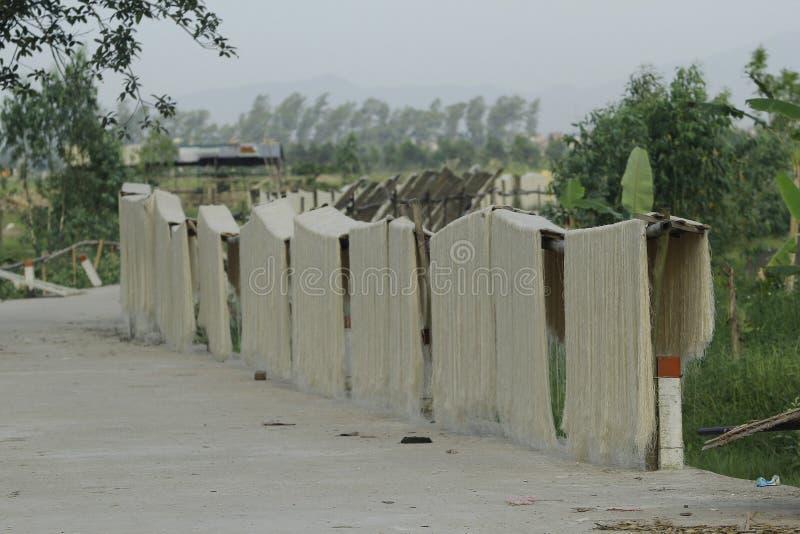 Hanoi, Vietname: a aletria da araruta macarronetes vietnamianos de um special está sendo secada nas cercas de bambu que vão avant fotografia de stock