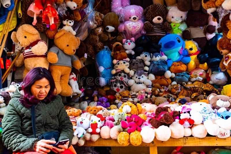 HANOI, VIETNAME - 13 de fevereiro de 2018: Uma mulher que vende ursos e crianças dos brinquedos fot em um mercado de rua velho em imagens de stock royalty free