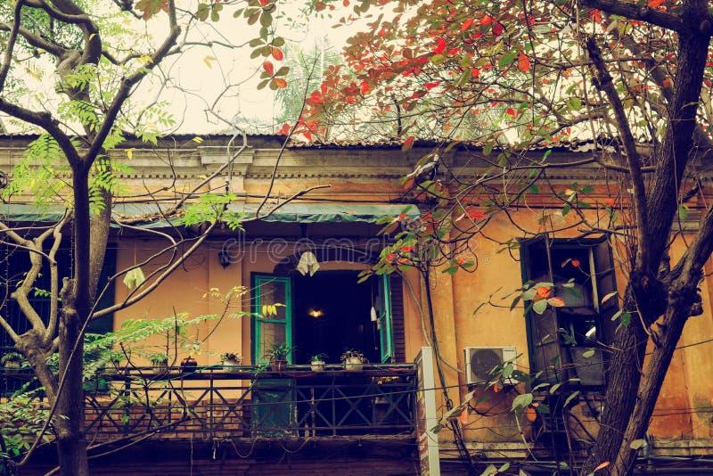 Hanoi, Vietname - 19 de janeiro de 2012: Árvore de amêndoa indiana com folhas do vermelho e construção velha na cidade antiga de  foto de stock royalty free