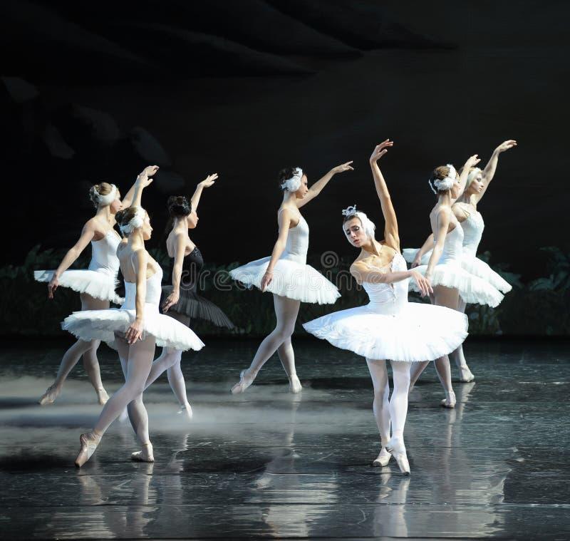 Hans förkrossade Ojta gick tillbaka till svanstam-balett svan sjön fotografering för bildbyråer