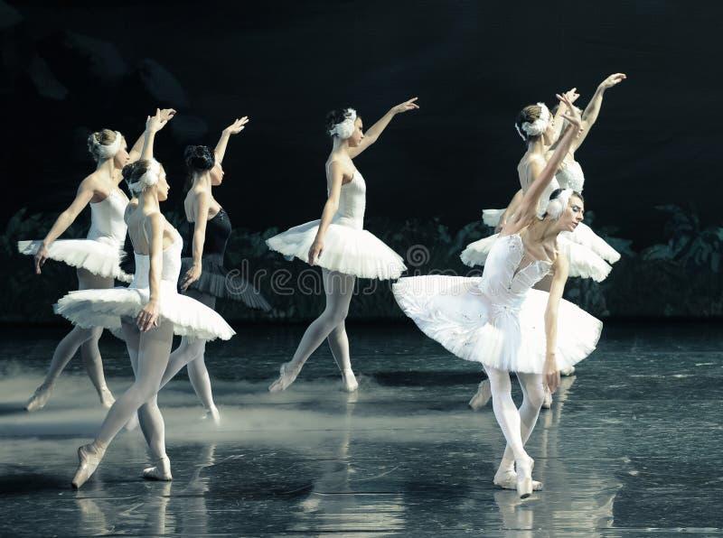 Hans förkrossade Ojta gick tillbaka till svanstam-balett svan sjön royaltyfri bild