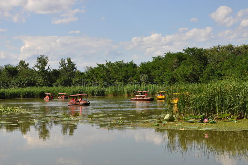 Hanshiqiao沼泽地自然保护在北京 免版税图库摄影