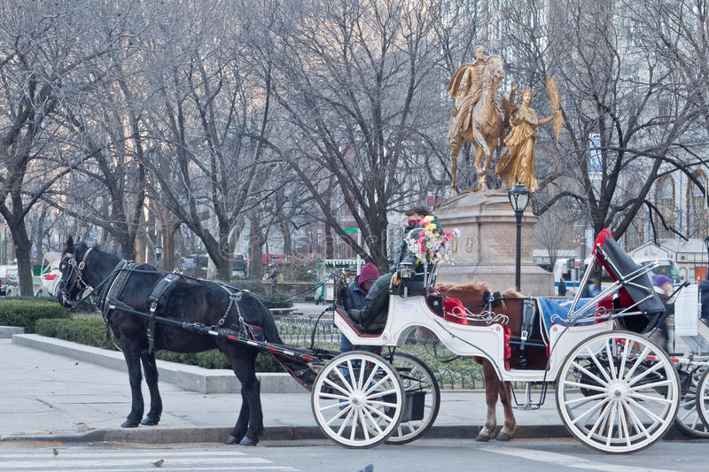 Download Hansom Cab In Central Park New York City Editorial Stock Photo - Image: 17837593