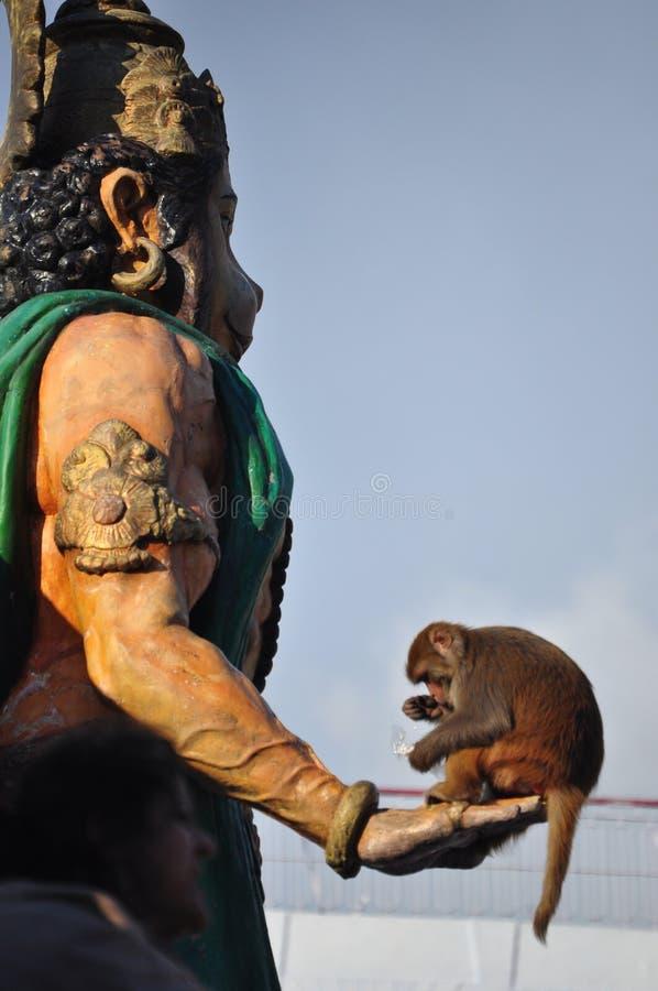Hanuman immagini stock