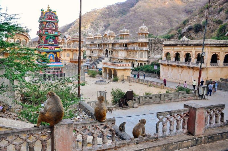 The Hanuman Temple near Jaipur, India. royalty free stock photos