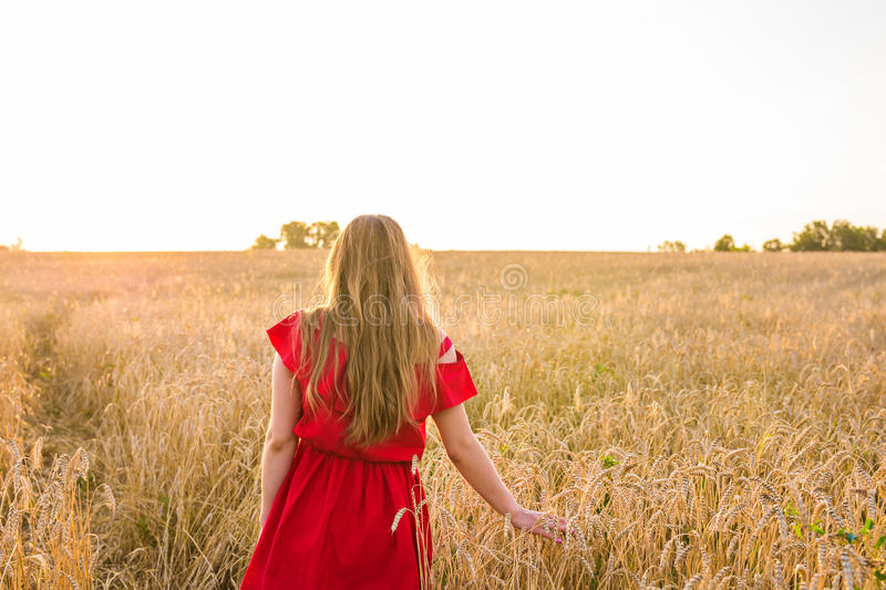 Happiness, nature, summer, autumn, vacation and people concept - young woman in the field from back.  stock photos
