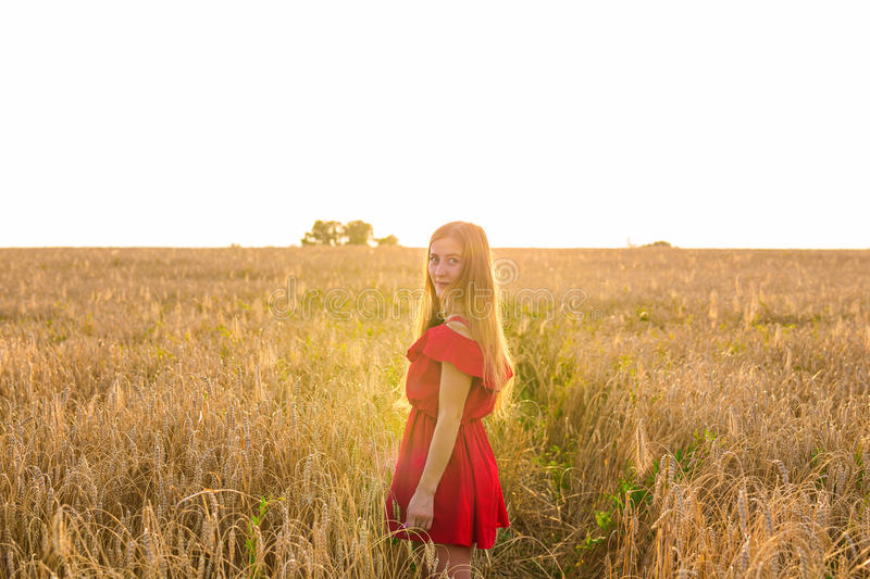 Happiness, nature, summer, autumn, vacation and people concept - young woman in the field. From back royalty free stock images