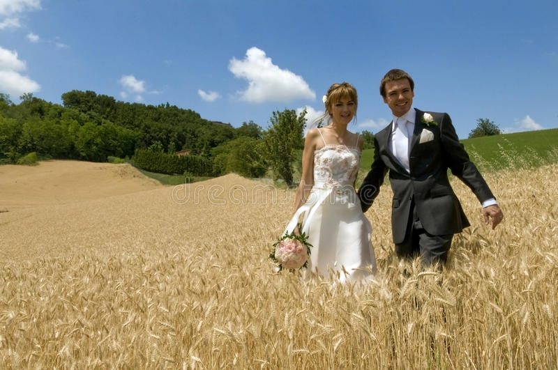 Happiness after the wedding. Two lovers are walking in the grain after the marriage stock photography