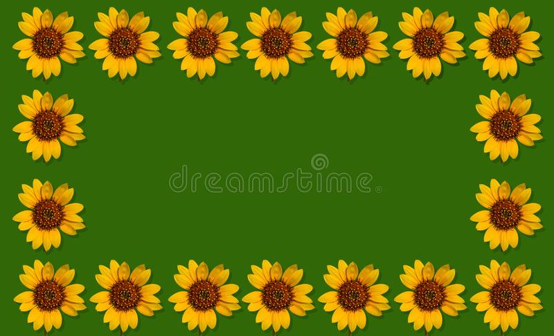 Happpy夏天背景用向日葵 免版税图库摄影