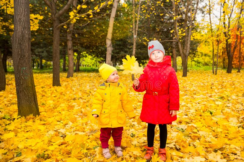 Happy adorable children girls sisters with leaves in autumn park. Happy adorable children sisters girls with leaves in autumn park. Fall.The concept of childhood royalty free stock photo