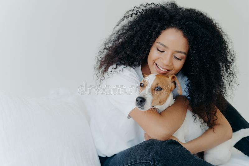Happy African American woman expresses love to dog, embraces pet, dressed in casual wear, sit on comfortable bed in bedroom, stock images