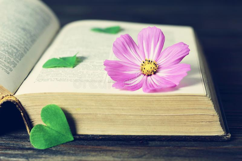 Happy Anniversary card with cosmos flower and vintage book. Happy Anniversary card with pink cosmos flower and vintage book stock photo