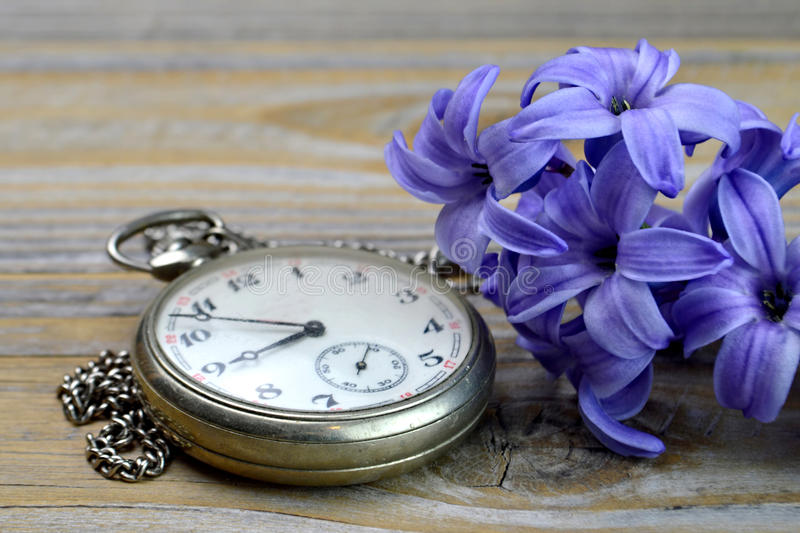 Happy anniversary card. With pocket watch and hyacinth flower royalty free stock photos