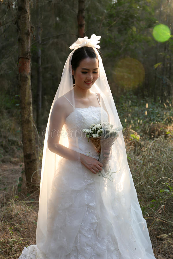 Happy Asian Bride Wearing Bridal Gown Stnading In A Pine Forest ...
