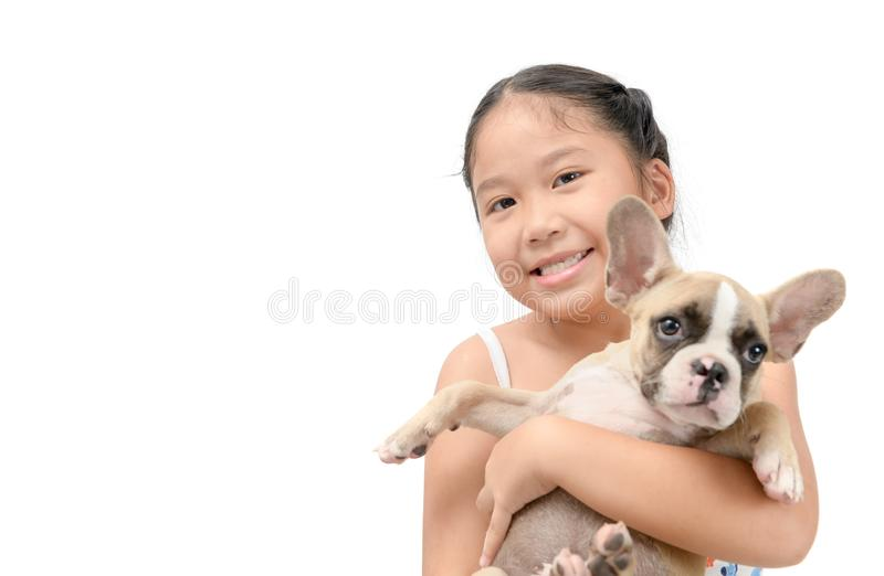 Happy asian kid girl holding french bulldog. Isolated on white background, pet and animal concept royalty free stock images