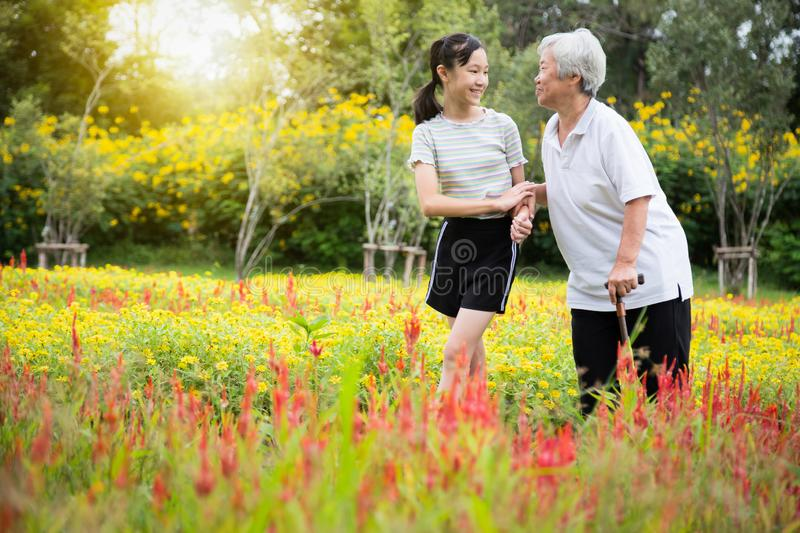 Happy asian senior grandmother with walking stick and granddaughter walking exercise for health having fun,enjoy in flower garden, royalty free stock image