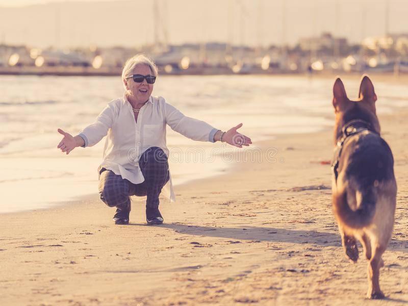 Happy attractive senior woman with her german shepard dog playing on the beach at autumn sunset royalty free stock images