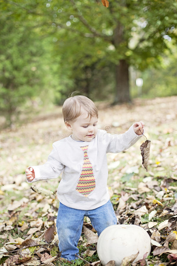 Happy baby in Autumn royalty free stock photo