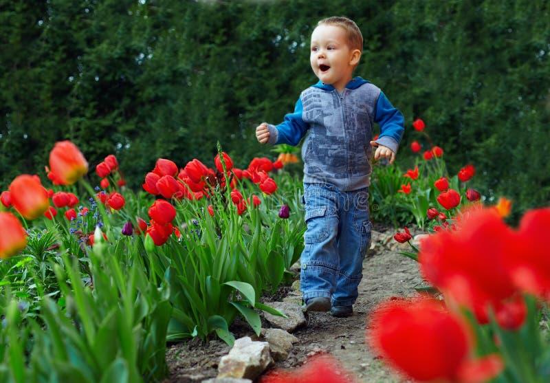 Happy baby boy running the flower garden stock photography
