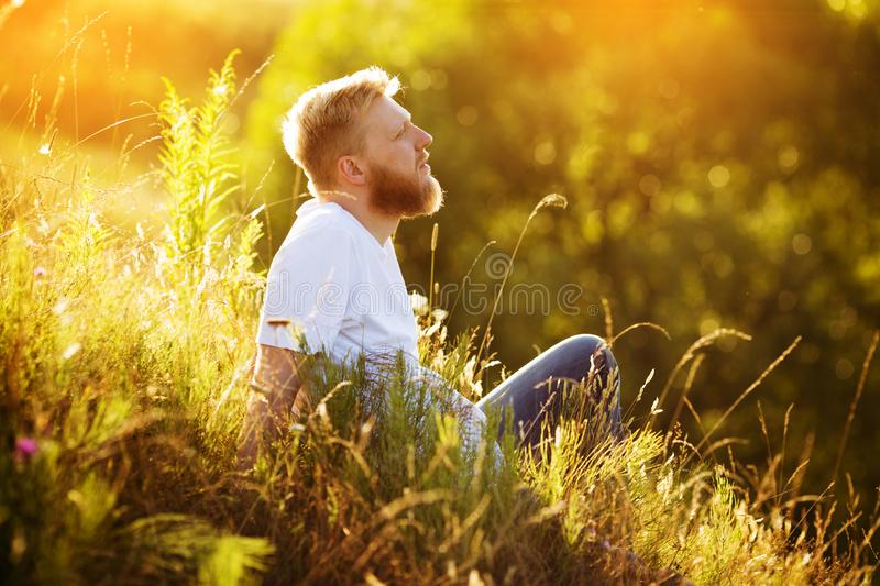 Happy bearded man resting among wildflowers stock images