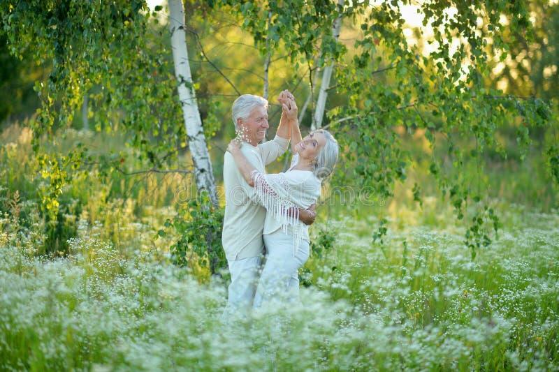 Portrait of beautiful senior couple dancing in summer park stock photo
