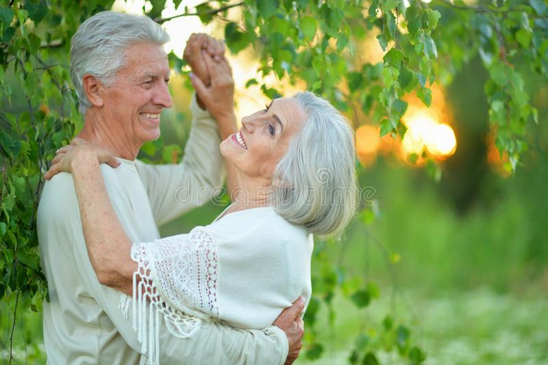 Portrait of happy beautiful senior couple dancing in summer park royalty free stock images