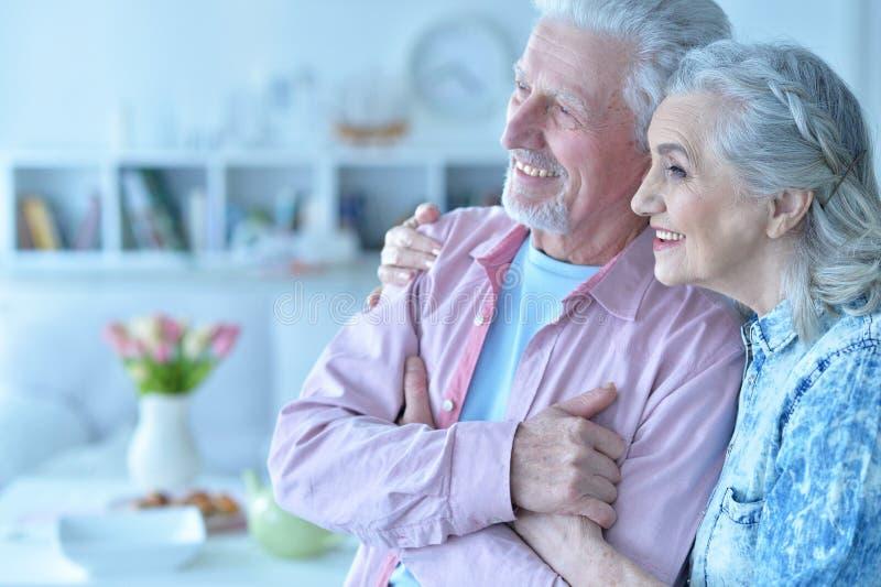 Close up portrait of happy senior couple posing royalty free stock photos