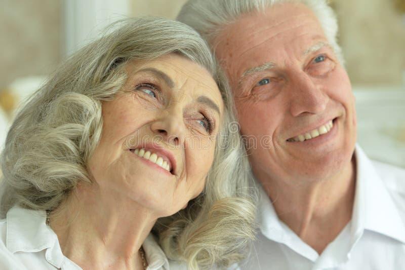 Portrait of happy beautiful senior couple posing at home stock image