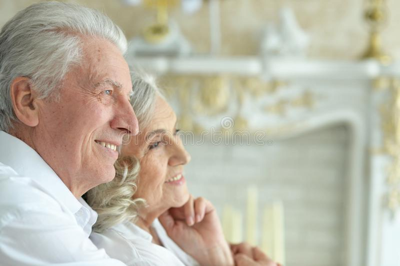 Portrait of happy beautiful senior couple posing at home stock images