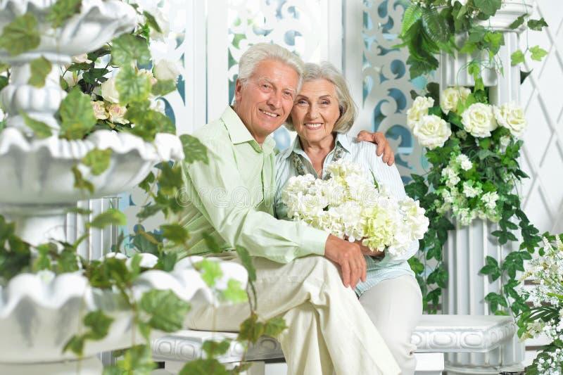Happy beautiful senior couple posing at home royalty free stock image