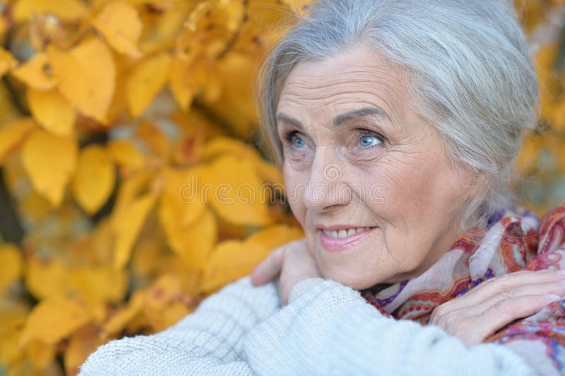 Close up portrait of happy senior woman in autumn park royalty free stock photography