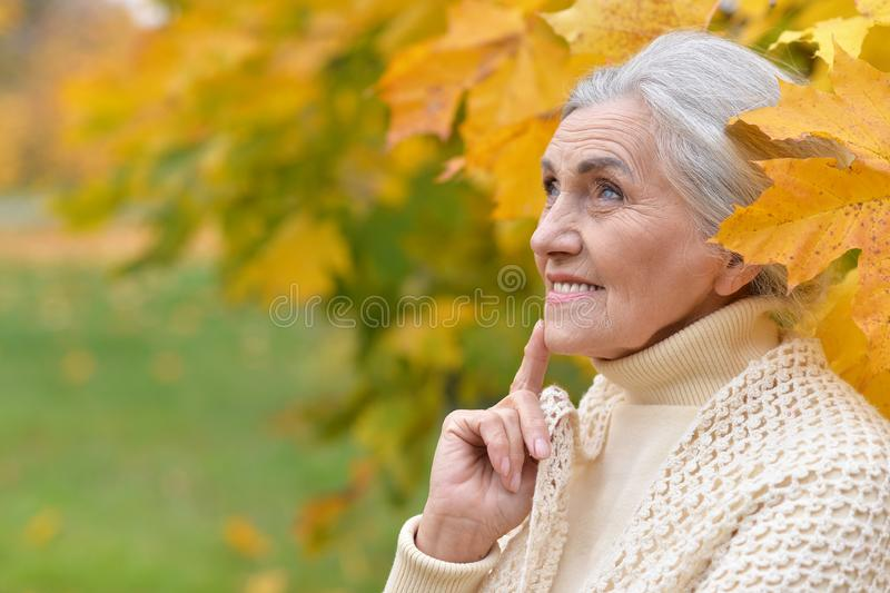 Close up portrait of happy senior woman in autumn park royalty free stock photo