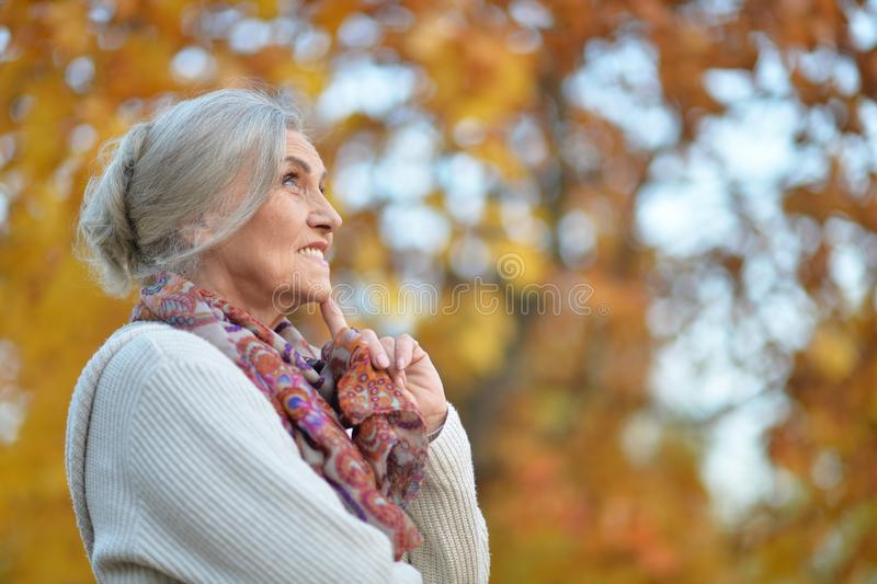 Portrait of happy senior woman in autumn park royalty free stock photography