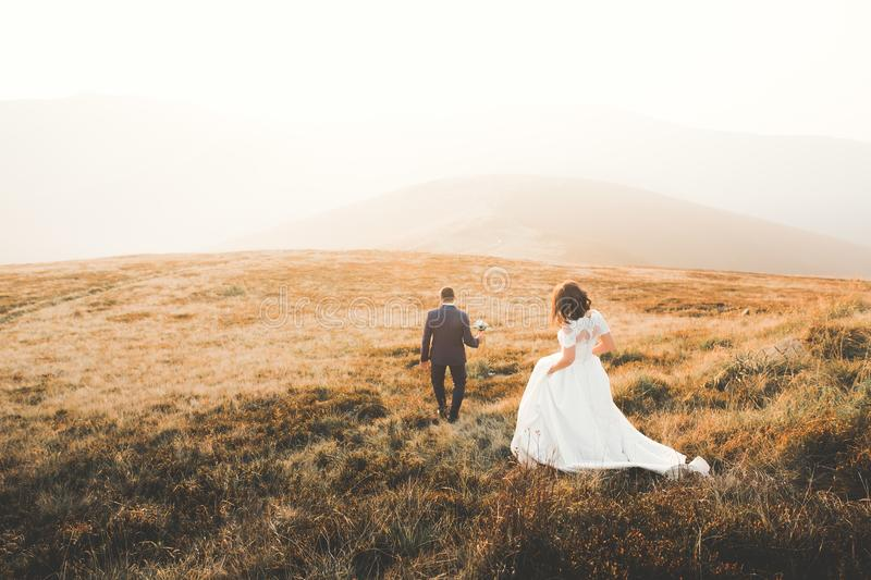 Happy beautiful wedding couple bride and groom at wedding day outdoors on the mountains rock. Happy marriage couple. Outdoors on nature, soft sunny lights stock images