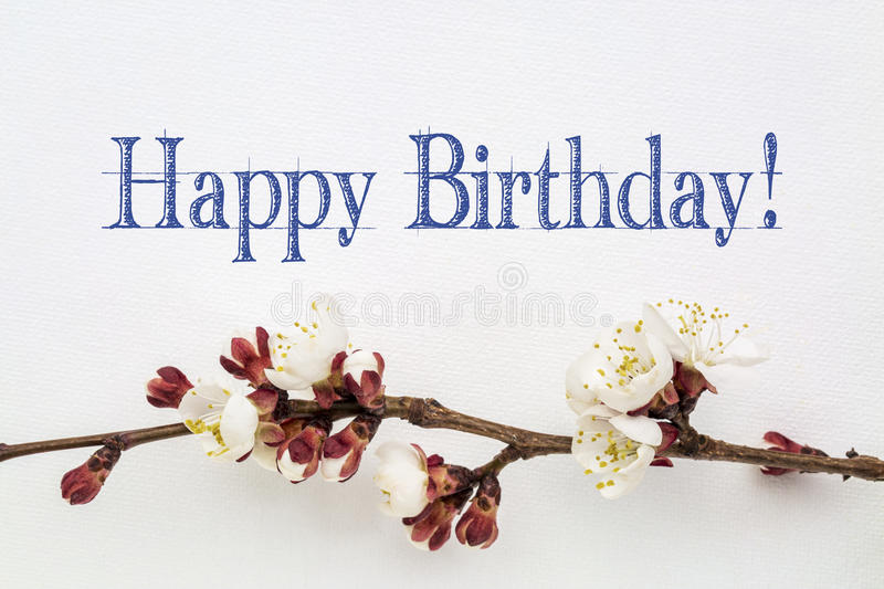 Happy Birthday with apricot flower - greeting card stock images