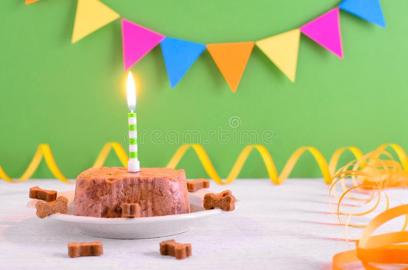 Happy birthday cake for dog from wet food and treats with candle on green party background. Selecttive focus stock photography