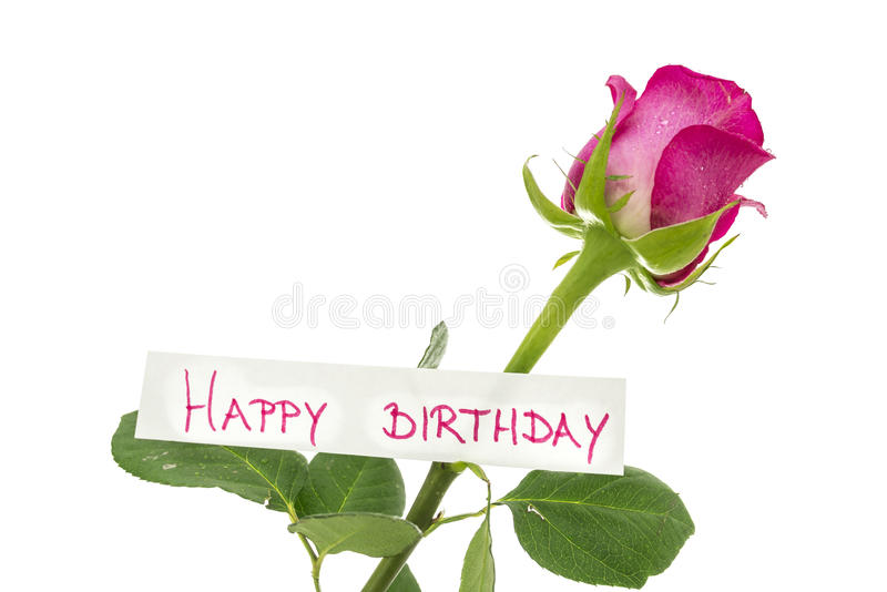 Happy birthday card. Attached to a beautiful pink rose. Isolated over white background stock images