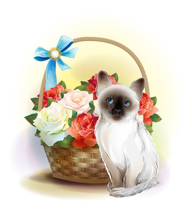 Happy Birthday Card Siamese Kitten Stock Vector Illustration Of