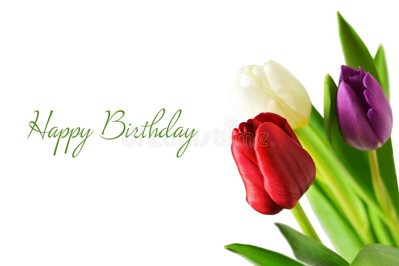 Happy Birthday card. With tulip flowers stock photo