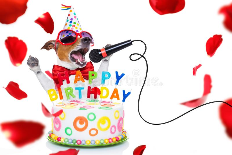 Happy birthday dog. Jack russell dog  as a surprise, singing birthday song  like karaoke with microphone ,behind funny cake,  wearing  red tie and party hat stock images
