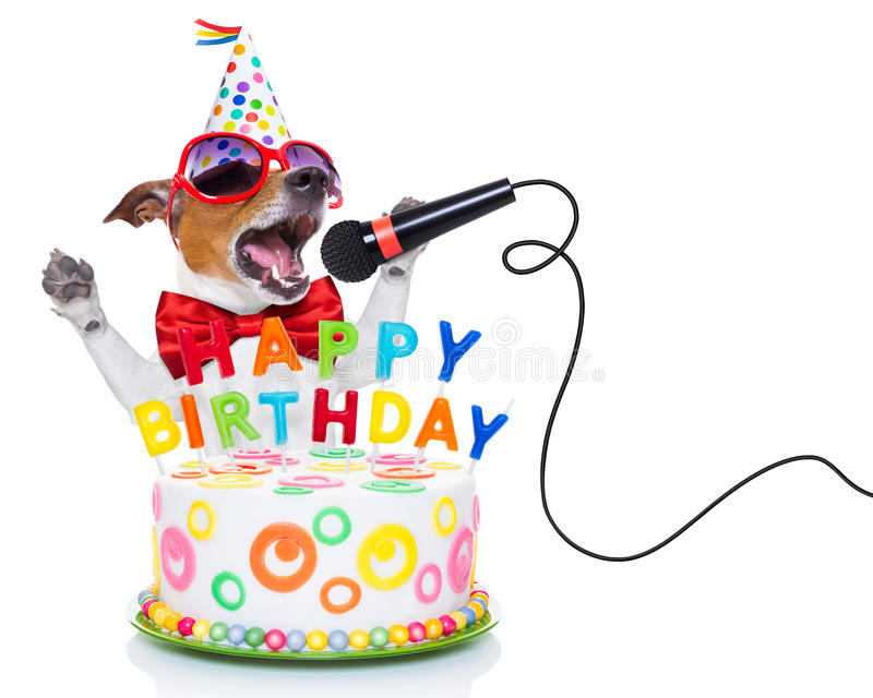 Happy birthday dog. Jack russell dog as a surprise, singing birthday song like karaoke with microphone ,behind funny cake, wearing red tie and party hat royalty free stock photos
