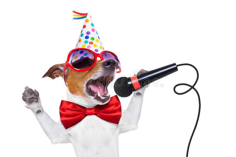 Happy birthday dog singing. Jack russell dog as a surprise, singing birthday song like karaoke with microphone wearing red tie and party hat , isolated on white royalty free stock photos
