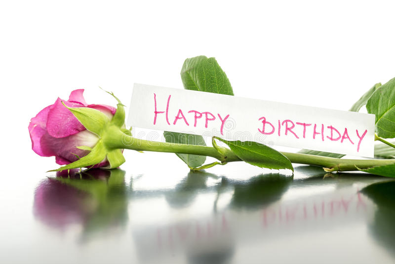Happy birthday flower. Beautiful pink rose lying on a desk with happy birthday card attached to it royalty free stock images