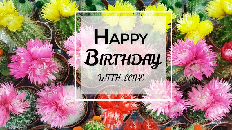 Happy Birthday Greeting Card with Cacti Flowers Background stock photos
