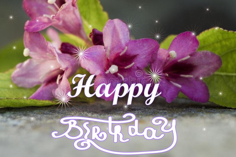 Happy birthday hand lettering. flower up close stock image