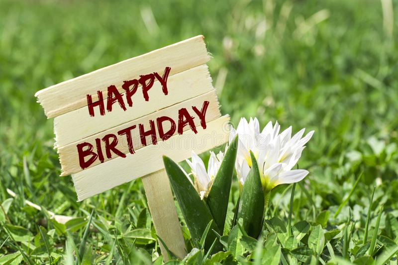 Happy birthday sign. Happy birthday on wooden sign in garden with spring flower stock photos