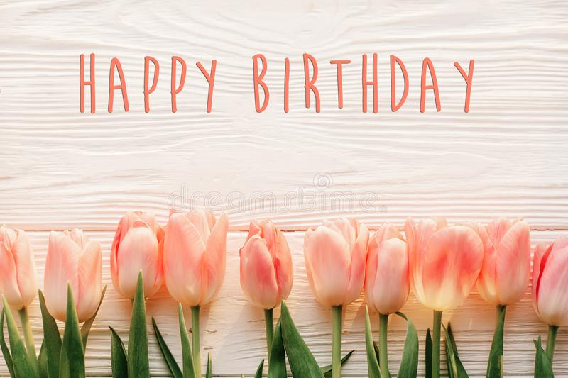 Happy birthday text sign on pink tulips on white rustic wooden b stock photography